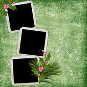 Kare ile yeşil arka plan — Stok fotoğraf
