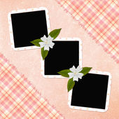 Background with frames and flowers — Stock Photo