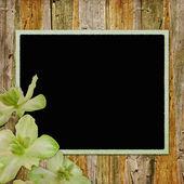 Framework for photo or congratulation — Stock Photo