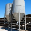Stock Photo: Two small tower silos on farm