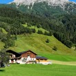 Alpine chalets, meadows and mountains - Stock Photo