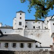 Buildings in yard of Renaissance castle — Stock Photo