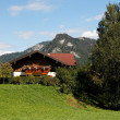 Alpine landscape with chalet in Austria - Stock Photo