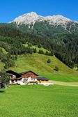 Alpine chalets, meadows and mountains — Stock Photo