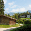Stock Photo: Peasants houses and barns in Austria
