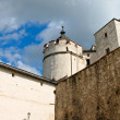 Towers and walls of Renaissance castle — Stock Photo