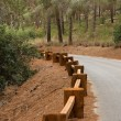 Stock Photo: Road in forest with wooden guardrail