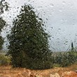 Rainy landscape through a car window — Stock Photo