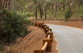 Road in the forest with wooden guardrail — Stock Photo