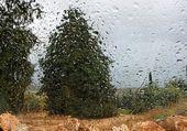 Rainy landscape through a car window — Stock Photo