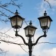 Retro street lantern and tree branches -  