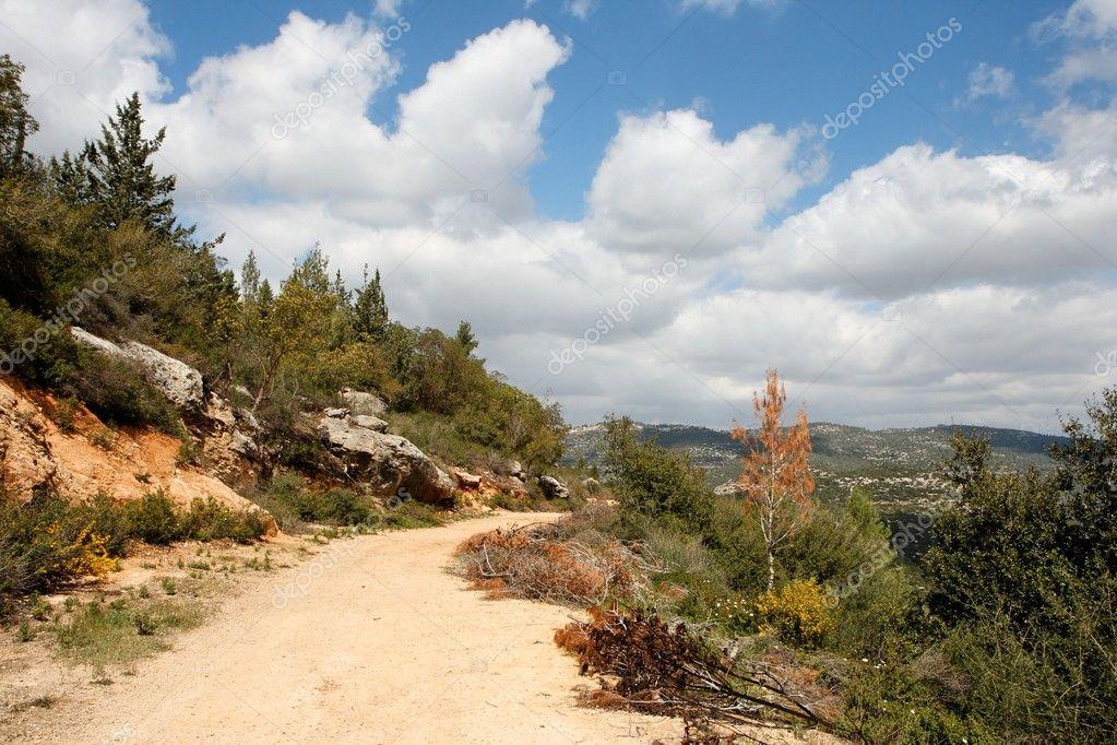 Scenic Photos: Scenic Path Pictures
