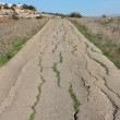 Old cracked countryside road - Stock Photo