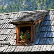 Stock Photo: Old wooden tiled roof with attic