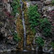 Waterfall on black basalt rocks — Foto Stock