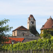 Medieval abbey among vineyards - Stock Photo