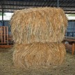 Haystacks at the agricultural farm - Stock Photo