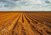 Orange plowed field in perspective — Stock Photo