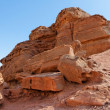 Stock Photo: Scenic orange rock in stone desert