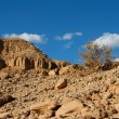 Rocky desert landscape with dry bush — Stock Photo #2500960