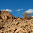 Stock Photo: Rocky desert landscape with dry bush