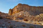 Gün batımında kayalık çöl manzarası — Stok fotoğraf