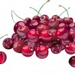 Stock Vector: Cherries