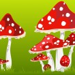 Fly agarics — Stock Vector