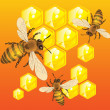 Royalty-Free Stock Vectorafbeeldingen: Bees
