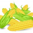 Stock Vector: Hill Ears of ripe corn