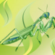 Royalty-Free Stock Vector Image: Mantis