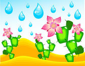 Cactuses blossoming under rain — Stock Vector