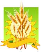 Espigas de trigo — Vector de stock