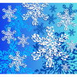 Winter snowflakes — Stock Vector