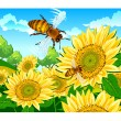 Bee and sunflower — Stock Vector