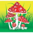 Royalty-Free Stock Vector Image: Fly agarics