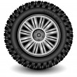 Vector de stock : Wheel