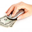Computer mouse on dollars — Stock Photo