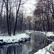 Winter. river — Stock Photo