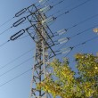 Stock Photo: High tension power lines