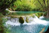 Beautiful lake country — Stock Photo