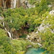 National park Plitvice lakes — Stock Photo #1172512
