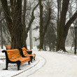 Winter day — Stock Photo #1173845