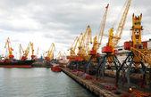 Cargo crane — Stock fotografie