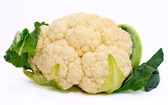 Cauliflower — Photo