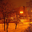 Night snow — Stock Photo
