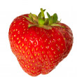 Fresh strawberry — Stock Photo #1274558