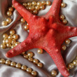 Royalty-Free Stock Photo: Red starfish and pearls