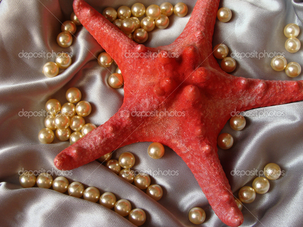Red starfish and pearls against the silver atlas — Stock Photo #1213936