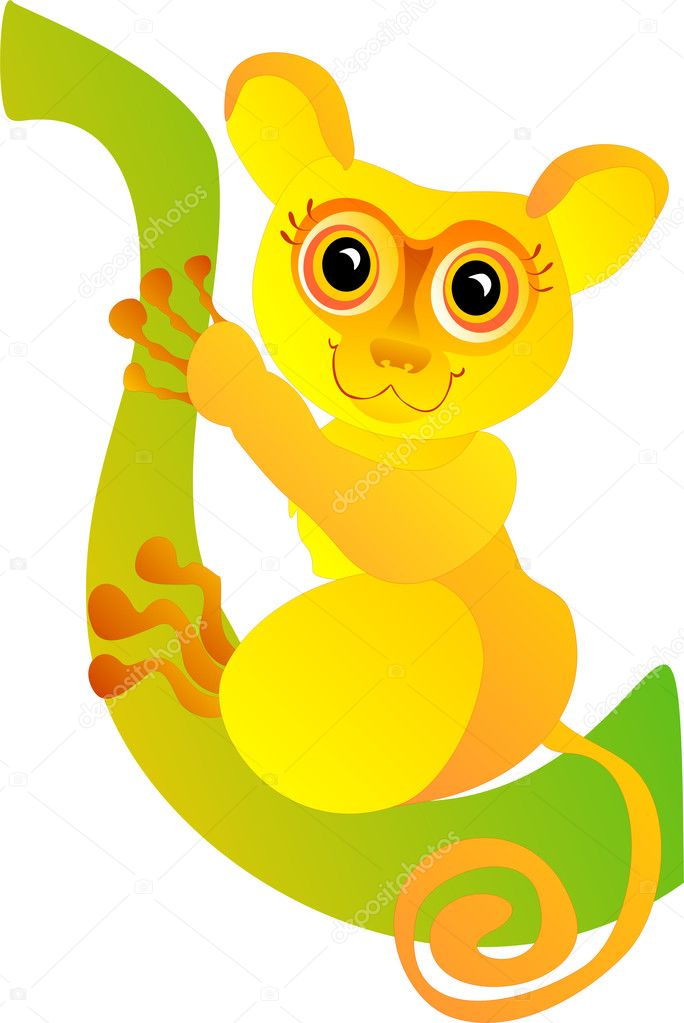 Funny tarsier isolated on a white — Stock Photo #1279139